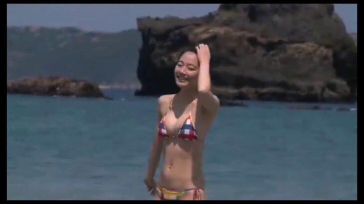 吉岡里帆の水着