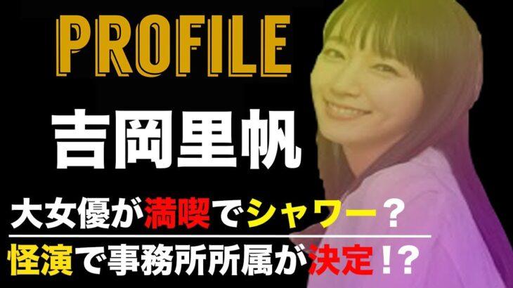 吉岡里帆 プロフィール 【ドラマ・インスタグラム・どんきつね】